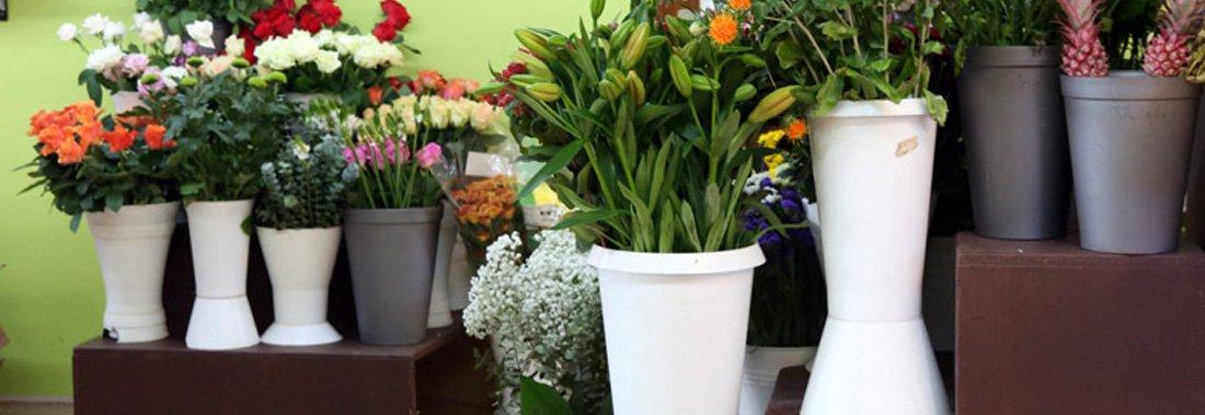 Flor' Alex - Fleuriste